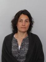 Engman Maarit, Yliopistonopettaja/University Teacher