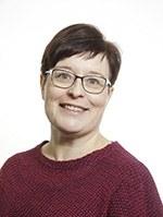 Rautiainen Anne Mari, Yliopistonopettaja
