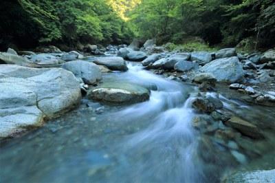 Avoimen väylä Luonnonvarat ja ympäristö -koulutusohjelmaan