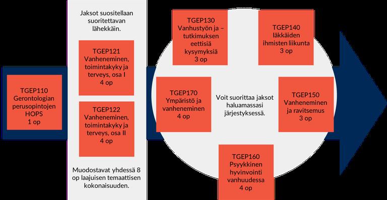 Gerontologia_suoritusjarjestys_2018_4_4.png