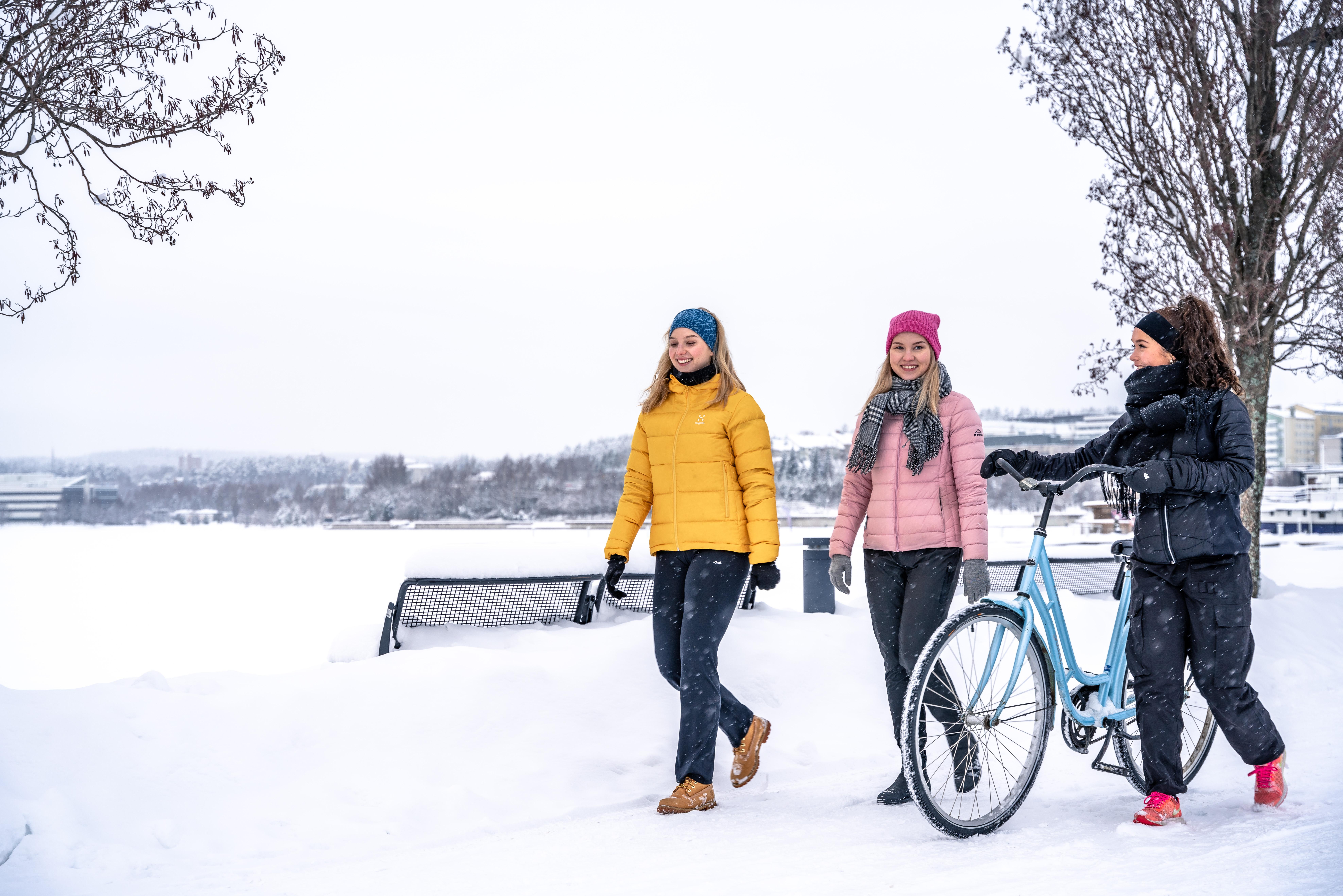 Opiskelutaito-webinaareista sujuvuutta opintoihin — Jyväskylän yliopiston avoin yliopisto