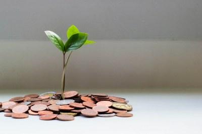 Tiedätkö menosi ja tulosi? Ota raha-asiat haltuun Oman talouden hallinta -opintojaksolla