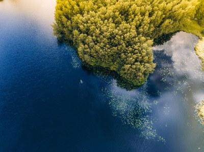 Kestävä kehitys veden näkökulmasta: Vesiekosysteemin toiminta ja luonnonvarat (3 op)